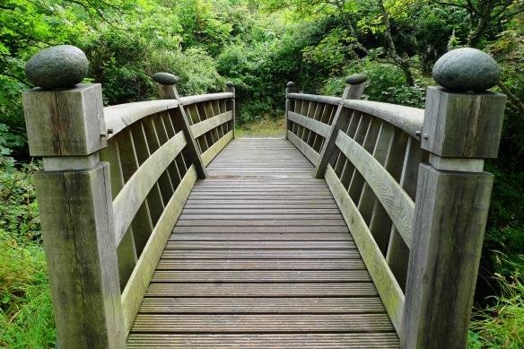 bridge-2062748.jpg